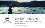 Download: EXPERT INSIGHT – What does Enterprise Excellence really mean?